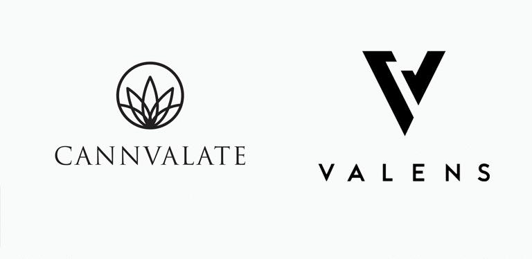 Valens Secures CA$40M Via Credit Facility, Builds Australia Enterprise