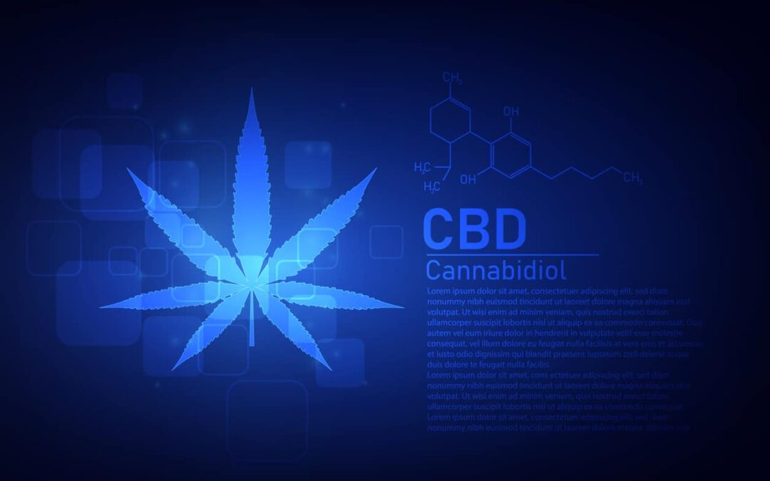 What's in cannabis oil?